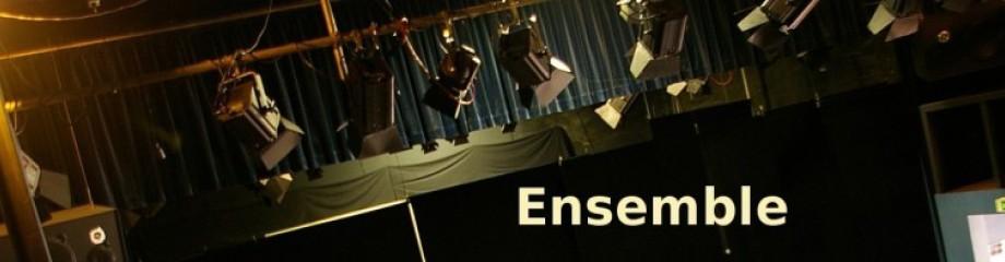 Mitwirkende im Theater Wedel, Schauspieler, Techniker, Beleuchter